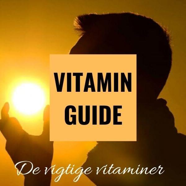 Hvilke vitaminer har man brug for Den store vitaminguide